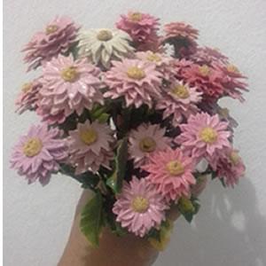 bunga roti